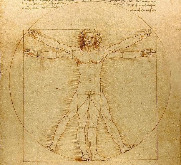 Uomo di vitruvio Leonardo da Vinci